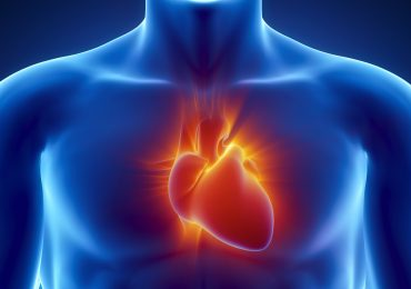 Organspende schenkt Leben