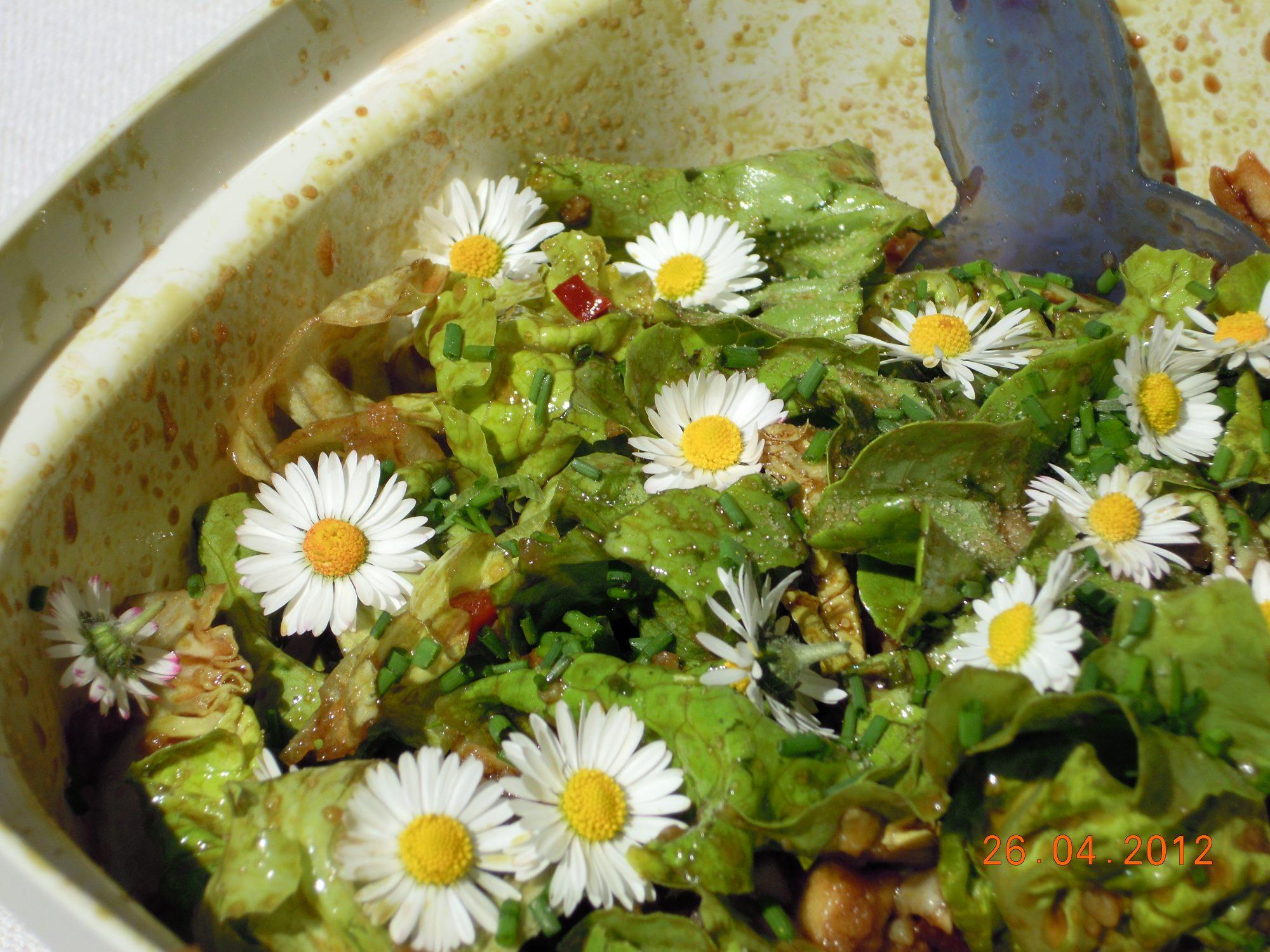 Frühlings Sommersalat